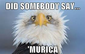 4 Of July Memes - did somebody say murica memes and comics via relatably com