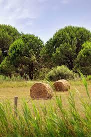 chambre agriculture saone et loire département de saône et loire solidarité agricole