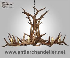 Chandelier For Sale Elk Antler Chandeliers For Elk Antler Chandeliers And Lighting