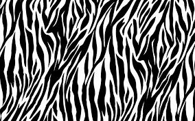 Zebra Bedroom Wallpaper Zebra Print Wallpaper For Bedrooms