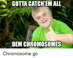 Ultra Downy Meme - mgflipcom gotta catchem all dem chromosomes chromosome go downy