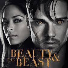 Seeking Saison 1 Vostfr And The Beast Saison 1 Serie En