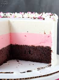 neapolitan ice cream cake life love and sugar
