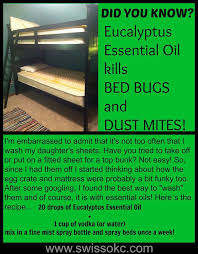 Powder That Kills Bed Bugs Best 25 Bed Bug Remedies Ideas On Pinterest Bed Bug Spray Bed