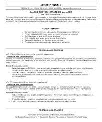 sle executive resume real estate executive resumes exles resume free resume images