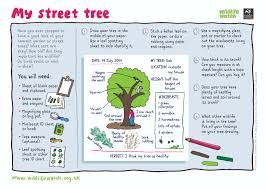 activity sheets the wildlife trusts