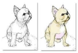 french bulldog sketches still a dreamer