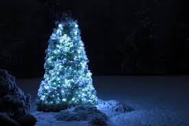 home depot black friday led christmas lights christmas lights excellent outdoor led christmas lights home
