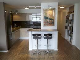 a tiny condo kitchen remodel