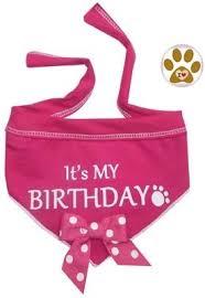 birthday girl pin it s my birthday blue or pink polka dot bandana scarf for dogs