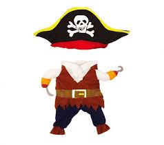 Cat Costumes Halloween Pirate Costume
