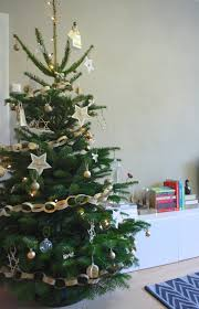 real christmas trees how to care for a real christmas tree huffpost