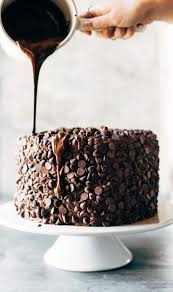 blackout chocolate cake recipe pinch of yum