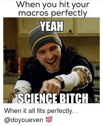 Science Bitch Meme - when you hit your macros perfectly yeah science bitch when it all