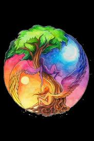 earth air water the yin yang of the universe