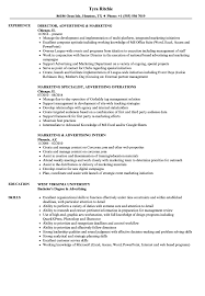 sle of resume marketing advertising resume sles velvet