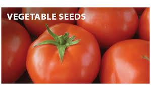 garden seed vegetable garden seed garden seed catalog garden