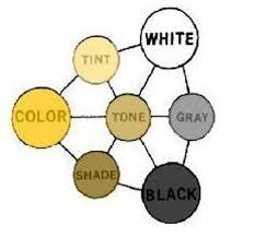 14 best color bias images on pinterest color theory color