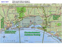 Panhandle Florida Map by Choctawhatchee Audubon Society Bird Hub