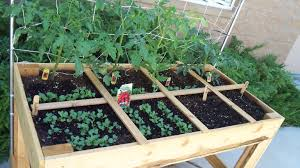 roll out vegetable garden 5 space savvy easy and efficient urban gardening ideas