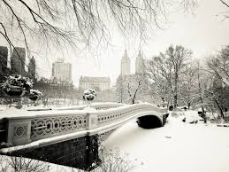 new york city in the snow central park winter landscape at bow