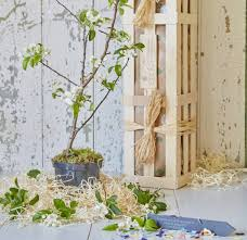 crab apple blossom tree wedding planting gift by the gluttonous