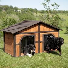 backyard kennel designs better homes and gardens diy how to build
