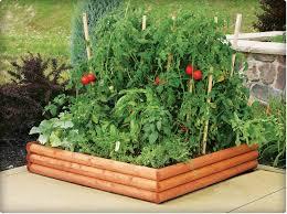 Backyard Raised Garden Ideas by Backyard Garden Raised Beds