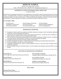 Resume For Salesman 100 Sales Resume Template Resume Examples Of Objective Resume