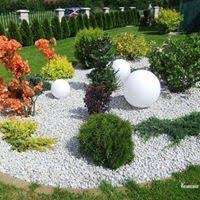 Pictures Of Rock Gardens Landscaping 645 Best Rock Garden Ideas Images On Pinterest Decks Garden