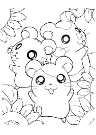 happy hamsters with sun flower coloring page animal pages of