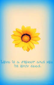 Flower And Love Quotes - 90 best flower u0026 bloom quotes images on pinterest
