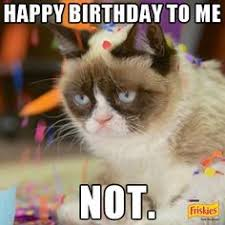 Birthday Grumpy Cat Meme - i missed grumpy cat on gma today and i was home animals