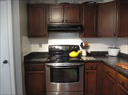 Best Way To Stain Kitchen Cabinets Kitchen Best Paint Finish For Kitchen Cabinets Painting Old