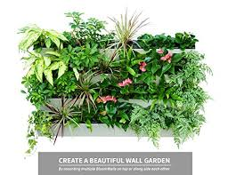 amazon com savvygrow bloomwall vertical planter with savvy edge