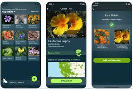 Seeking De Que Se Trata Seek El Shazam De La Naturaleza Applicantes Información Sobre