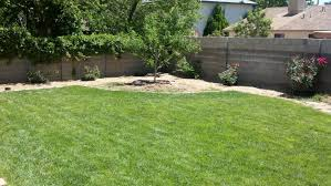 Landscaping Albuquerque Nm by Lawn Care U0026 Landscaping In Albuquerque Nm Affordable Lawn Care
