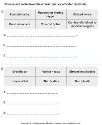 mammal characteristics worksheet turtle diary