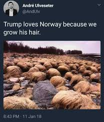 Norway Meme - dopl3r com memes andré ulveseter andulv trump loves norway