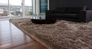 Rug Living Room Flooring Modern Interior Rug Design With Appealing Momeni Rugs