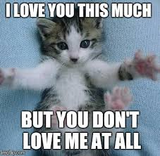 Love Me Meme - i love you this much memes imgflip