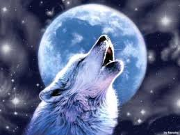psychic medium marveena meek explains how a moon s energies
