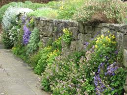 Garden Rock Wall by A Love Of Informal Gardens Honeysuckle Life