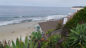 Urban Gardener Newport Beach Newport Coast Huntington Beach Palos Verdes Estates And More