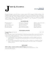business resume templates free business resume template resumes templates development analyst