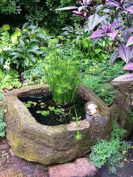 23 best ponds and water gardening images on pinterest a pond
