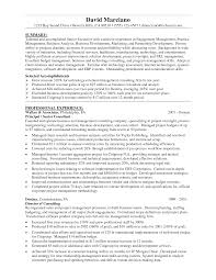 100 sample resume business process management sample call