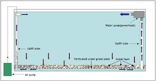 membuat filter aquarium kecil cara membuat filter under gravel untuk aquarium ikan hias yudi