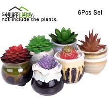 ceramic plant pots nycbased plant service the sill runs one of my