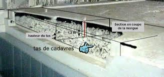 les chambres à gaz ont elles vraiment existées chambres à gaz zyklon b vincent reynouard